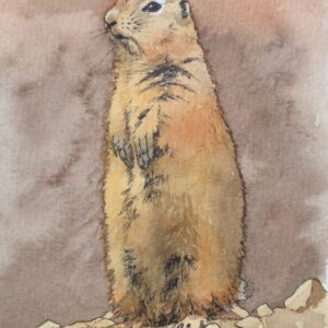 "Santa Fe Marketplace ""Prairie Dog"" painting"