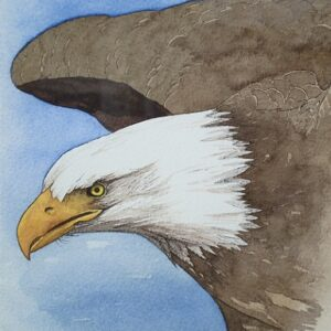 "Santa Fe Marketplace ""Bald Eagle in Flight"" painting"