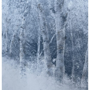 Santa Fe Marketplace Divine – Acrylic Aspen in Snow Painting 8″x6″