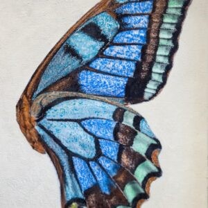 Santa Fe Marketplace Blue Butterfly Wing – Original Mixed Media Art
