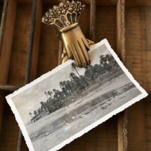Santa Fe Marketplace Victorian-esque Brass Hand Clip