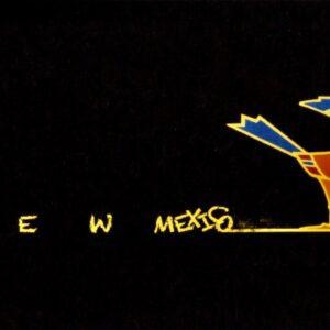 "Santa Fe Marketplace ""New Mexico Roadrunner"" Greeting Cards by William Rotsaert"